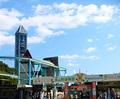 【名古屋】東山動物園&スカイタワーお見合い