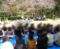 【広島】お花見パーティー