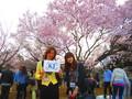 【新宿】ツア婚第5弾!春恋♪お花見ツアー婚[大人世代]